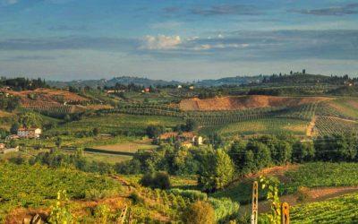 Tour nel Chianti con gli studenti di italiano della scuola